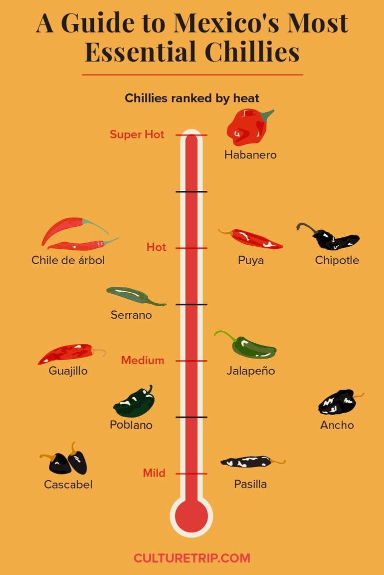 A Guide to Mexico's Most Essential Chillies