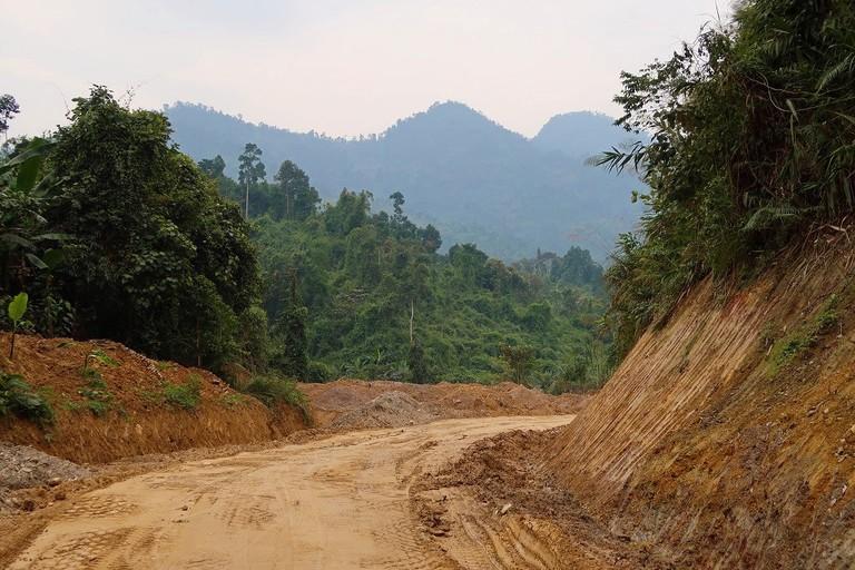 Deforestation in Vietnam (2)
