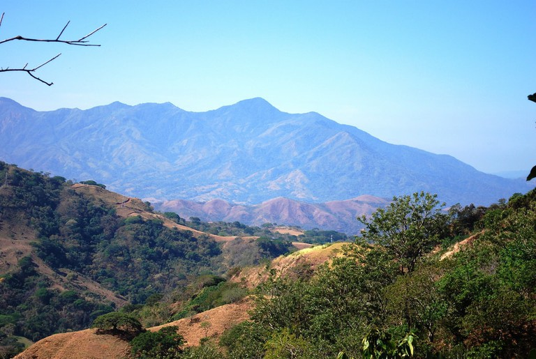 Dry Forest Mountains