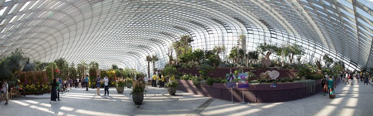 flower-dome-2570178_1280
