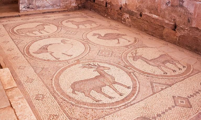 Mosaic_Petra_Church_Petra_Jordan