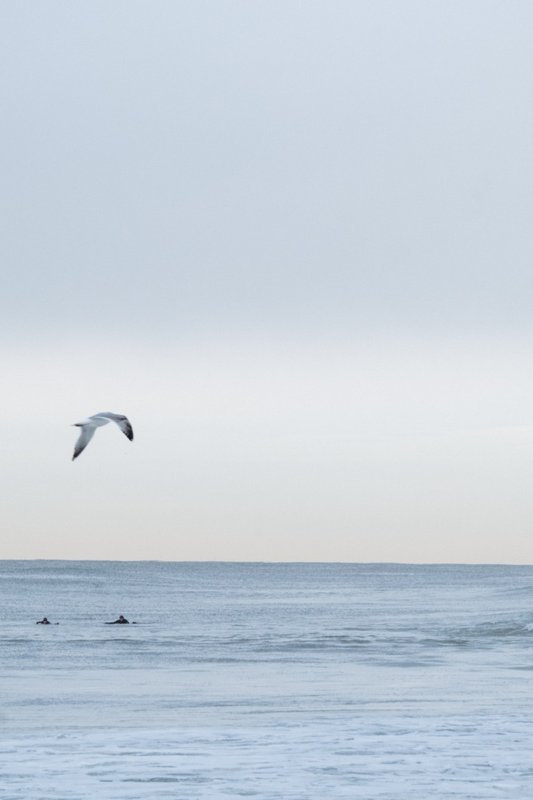Rockaway, Queens, New York, surfing