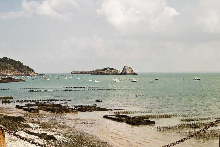 oyster and musse beds cancale