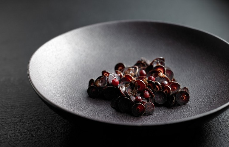 Salt-cured red kangaroo with bunya bunya © Attica