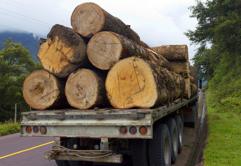 Trucking timber from the Amazon over the Andes in Ecuador | © Durch Dr Morley Read/Shutterstock