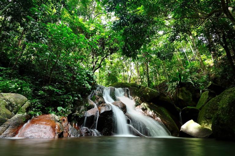 Trek through the jungle in Tioman to visit the stunning waterfalls