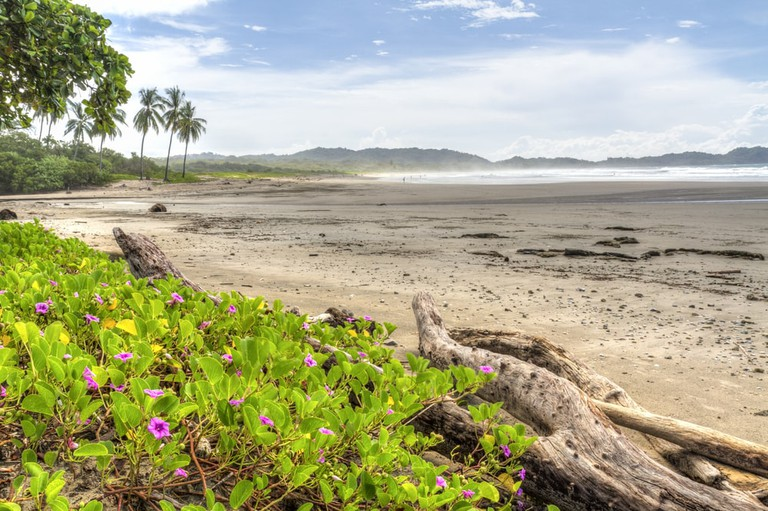 Mmisty morning at Playa Guiones in Nosara, Costa Rica | © Colin D. Young/Shutterstock