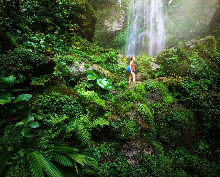 Waterfall in the Central America jungles