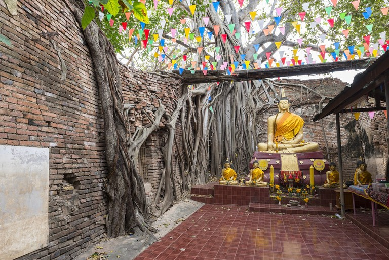 Buddha statue with the tree roots at Wat Si temple, Singburi, Thailand