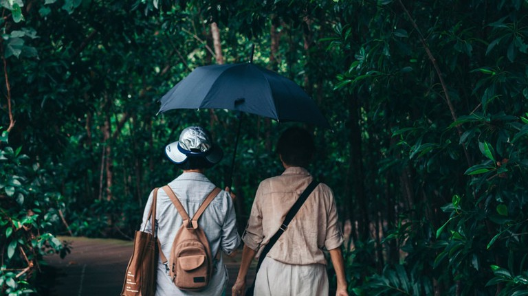 Singapore-Umbrella-ryan-cheng-554503-unsplash