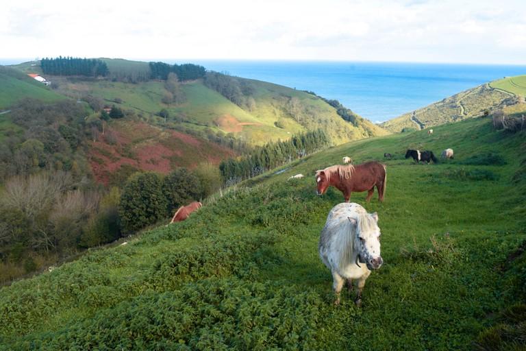Traditional Basque Farm (Custom)