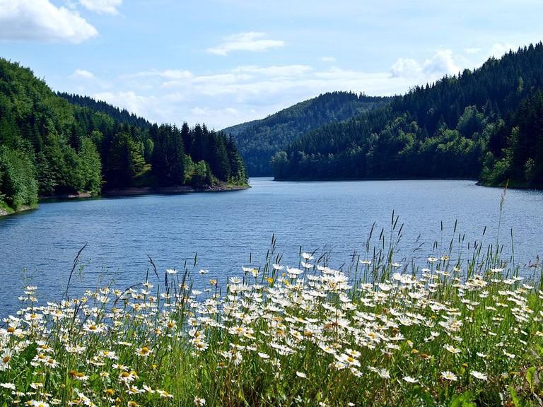 Wanderung_um_die_Talsperre_Schönbrunn_bei_Frauenwald_-_Rennsteig_-_Thüringer_Wald_-_panoramio_(5)