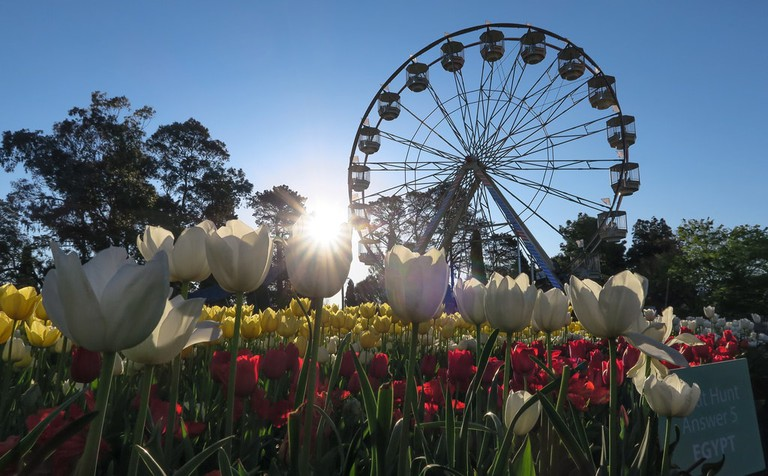 Floriade flower festival in Canberra © Robert Montgomery / Flickr