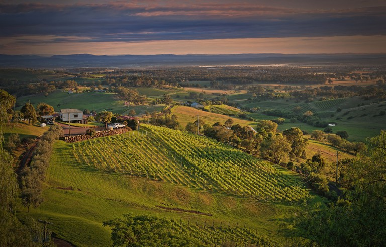 Hunter Valley wine country © Kevin Rheese / Flickr