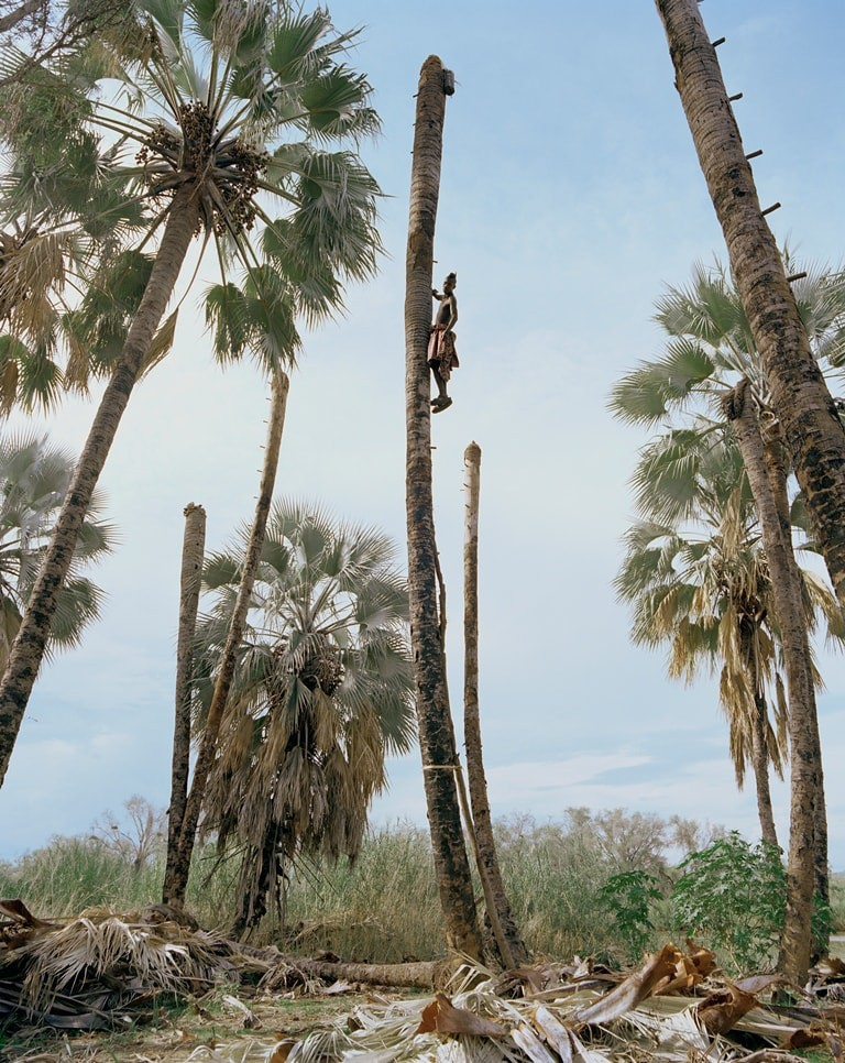 Image from the Palm Wine Collectors series