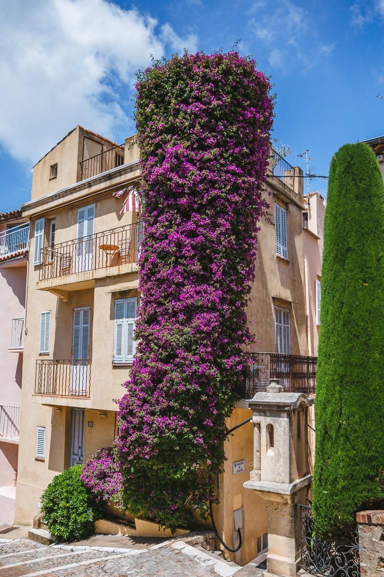 JCTP0068-Old Town Le Suquet-Cannes-France-Fenn--34