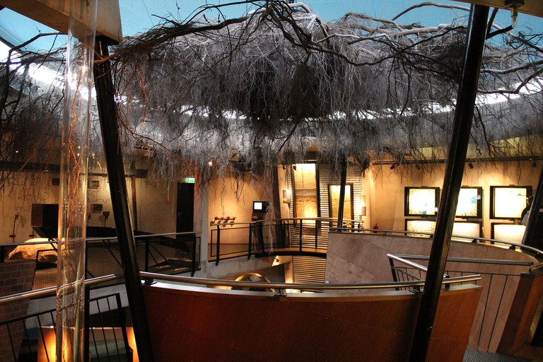 Museonder_Tree_2012