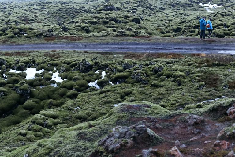 Eldhraun Lava Field-Iceland Golden Circle Tour-Iceland