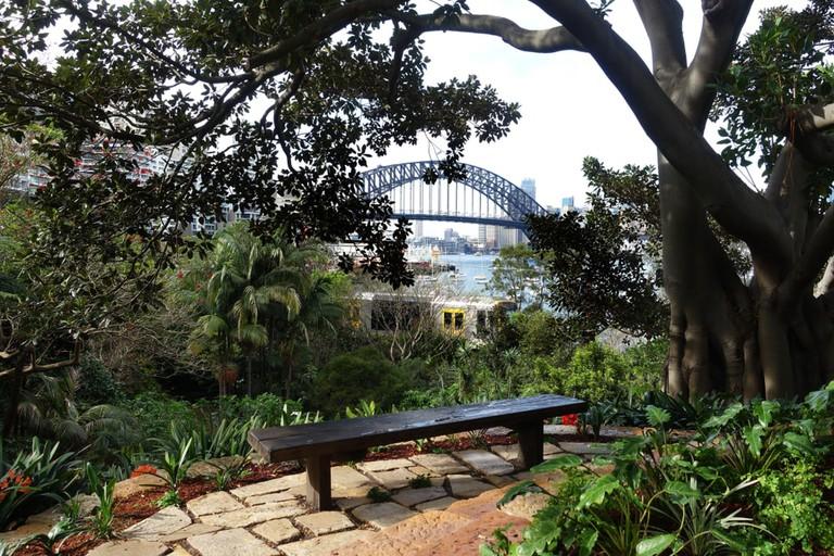 Harbour Bridge view from Wendy's Secret Garden, Sydney, Australia