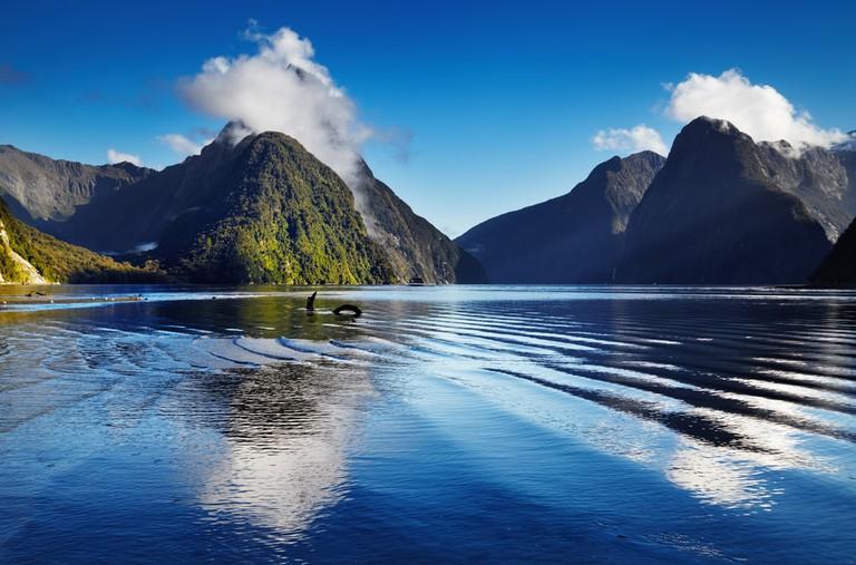 Fiord Milford Sound, South Island, New Zealand