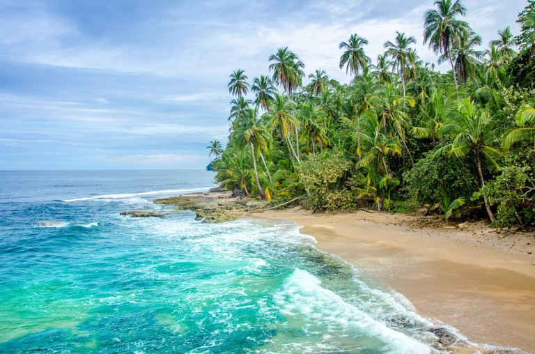 Wild caribbean beach of Costa Rica, Manzanillo