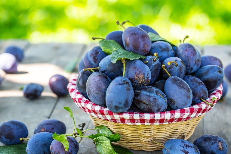 Blue and violet plums