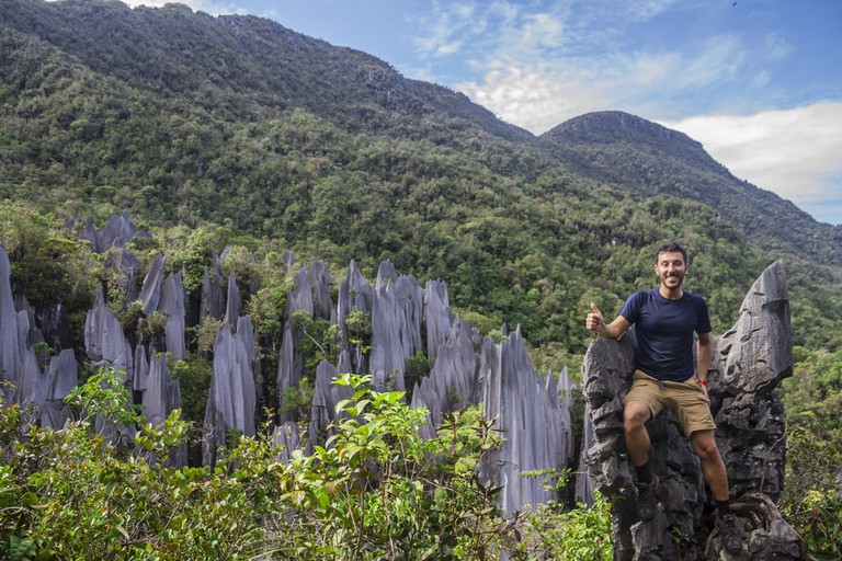 Limestone pinnacles at Gunung Mulu national park, Sabah, Borneo, Malaysia