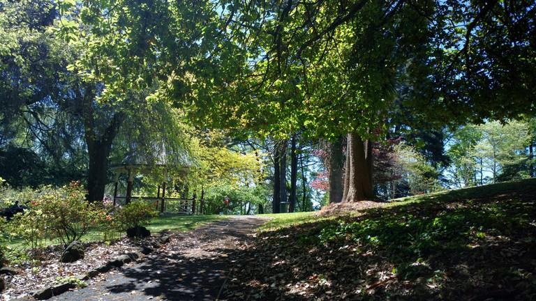 Wombat Hill Gardens in Daylesford © s13n1 / Flickr