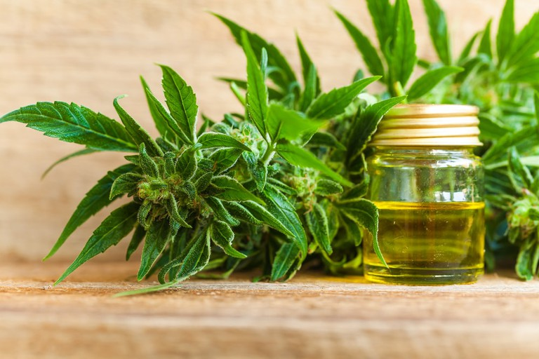 CBD is one of more than 400 compounds found in cannabis