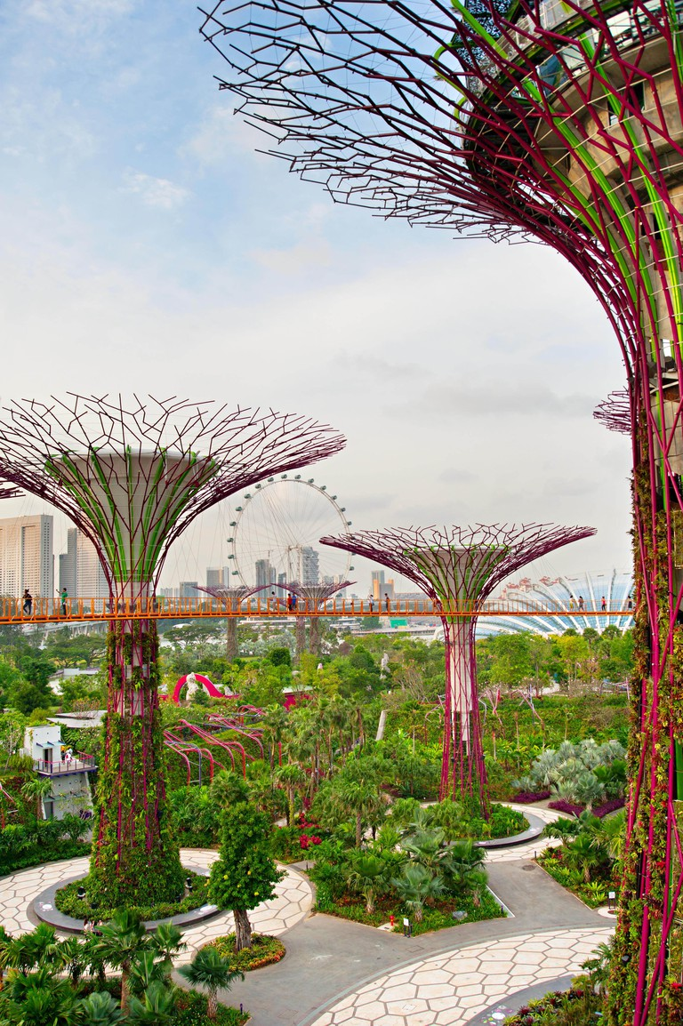 People walking on a bridge at Gardens by the Bay in Singapore. Gardens by the Bay was crowned World