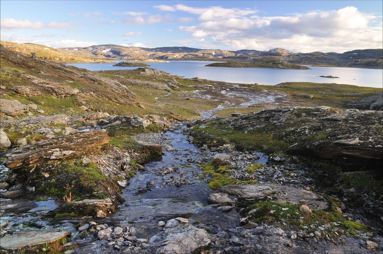 Hardangervidda in summer time, colored river (Norway)