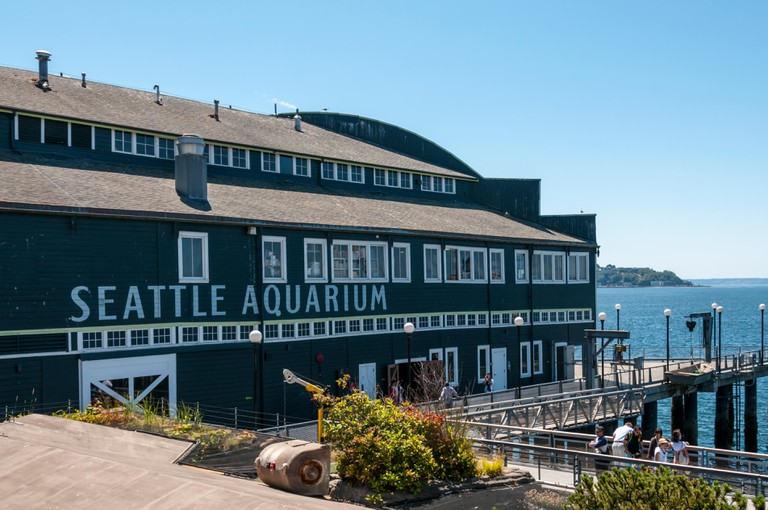 The Seattle Aquarium at Pier 59 on the Elliott Bay waterfront of Seattle.