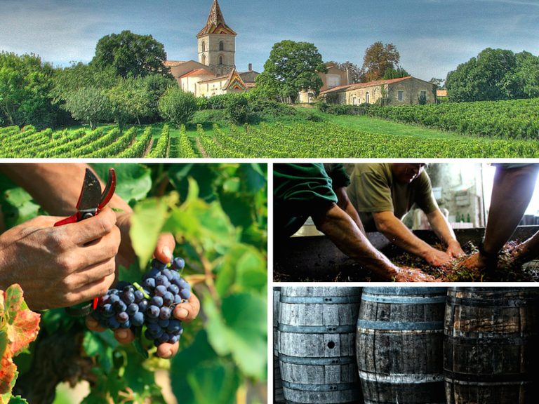 © michael clarke stuff/Flickr   © jean-louis Zimmermann/Flickr   © Blaye Côtes de Bordeaux/Flickr   © Pixabay