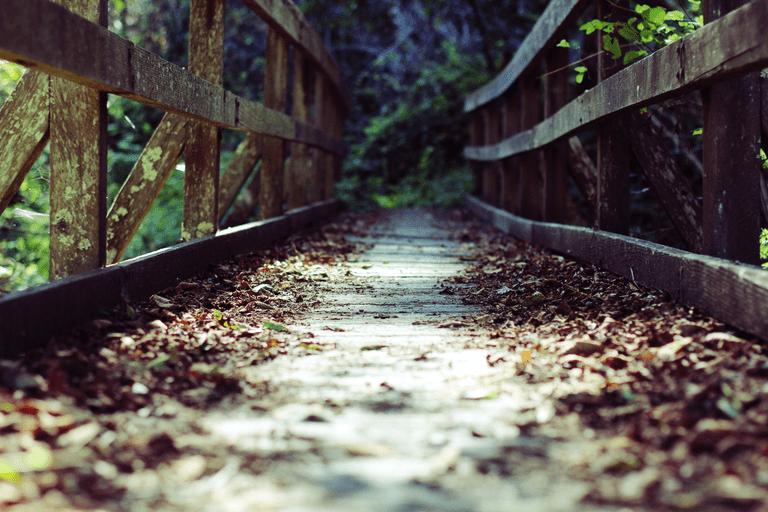 The Trails © Chrispapsmear/Wikipedia