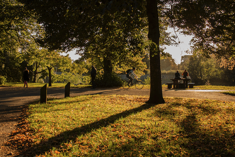 Autumn in Bute Park|©Jeremy Segrott/Flickr