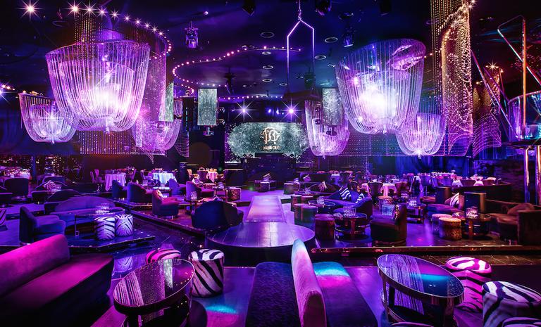 Inside the Cavalli Club