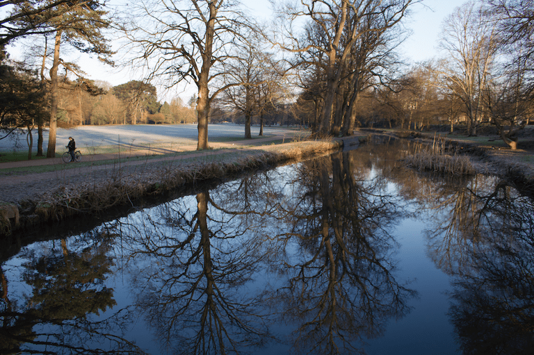 A crisp Bute Park|©Jeremy Segrott/Flickr