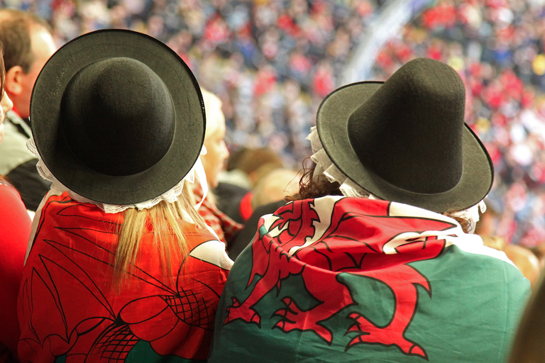 Two Welsh Dragons|©Chris Brown/Flickr