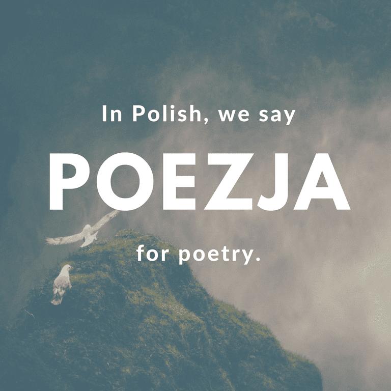 Poezja-Poetry © Culture Trip/Ewa Zubek