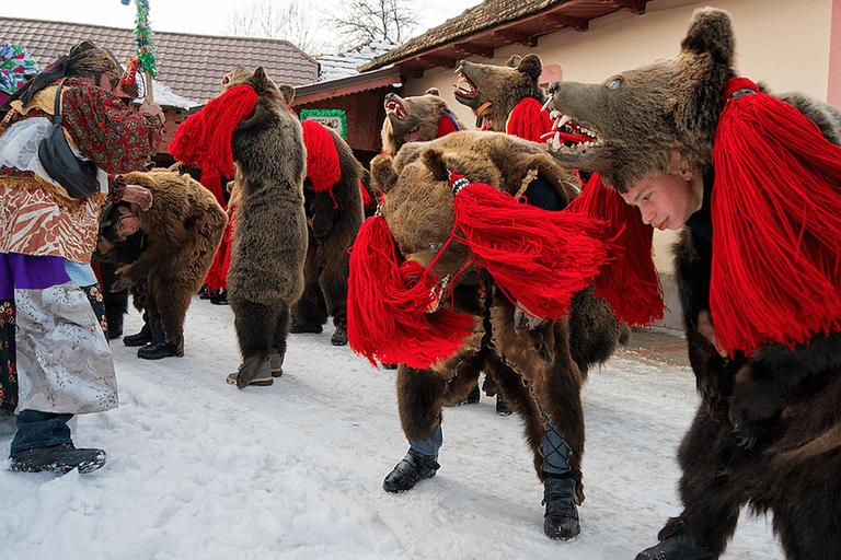 In Romanian culture bears are sacred animals   © Alex Dima