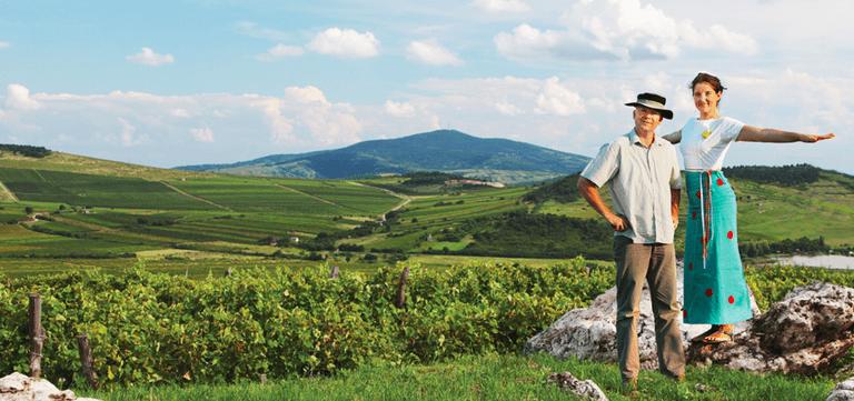 Izabella Zwack, Dobogó wines