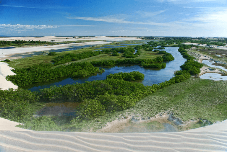 Protect the natural beauty in Jericoacoara / © U L / Wikimedia Commons