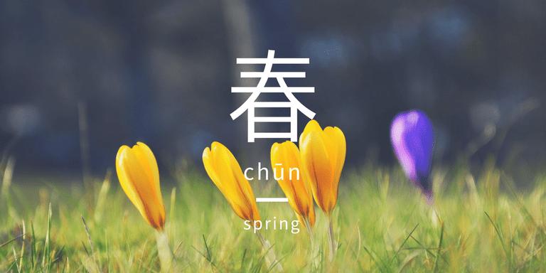 Spring crocuses blooming   Pixabay