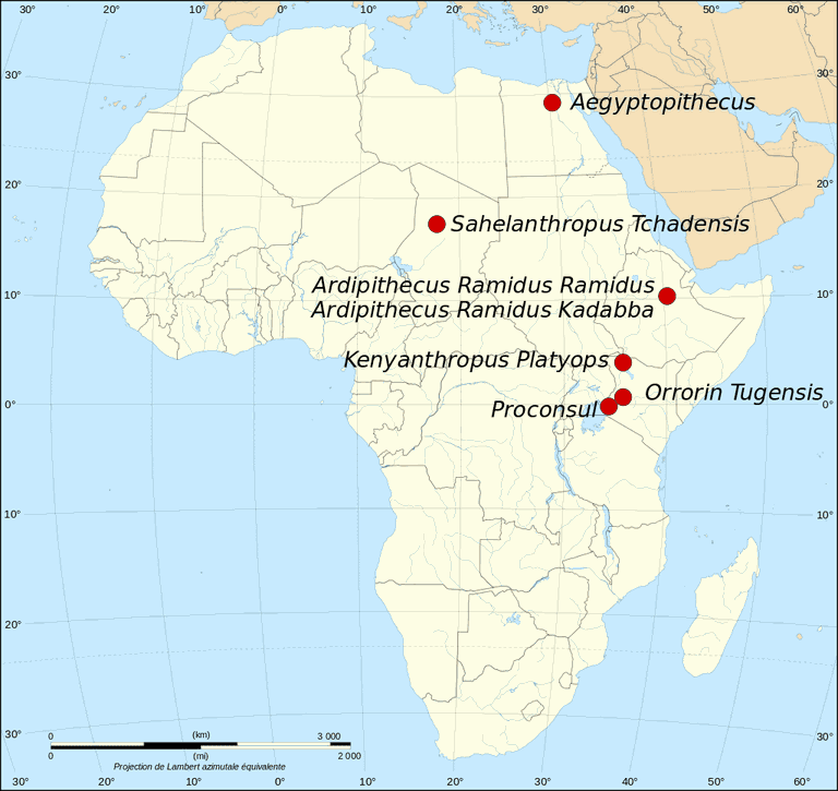 Map of the fossil sites of the earliest hominids (35.8-3.3M BP)