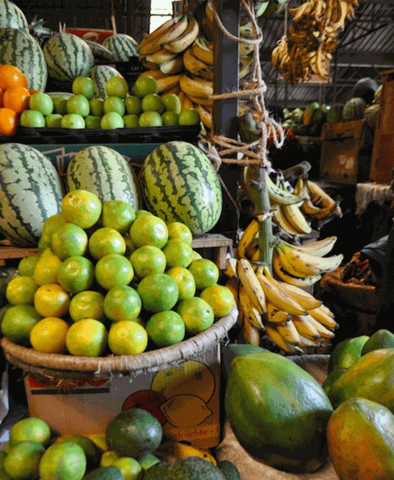 The plentiful fruit selection