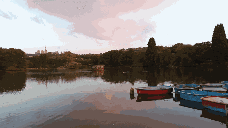 Running_Zoo Lake-min