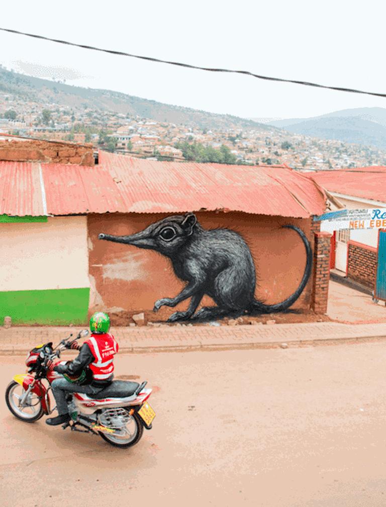 ROA's elephant shrew mural in Nyamirambo