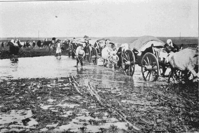 Muslim_refugees_in_the_initial_phase_of_the_First_Balkan_War
