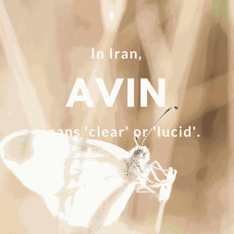 Avin- clear or lucid | © Free-Photos / Pixabay