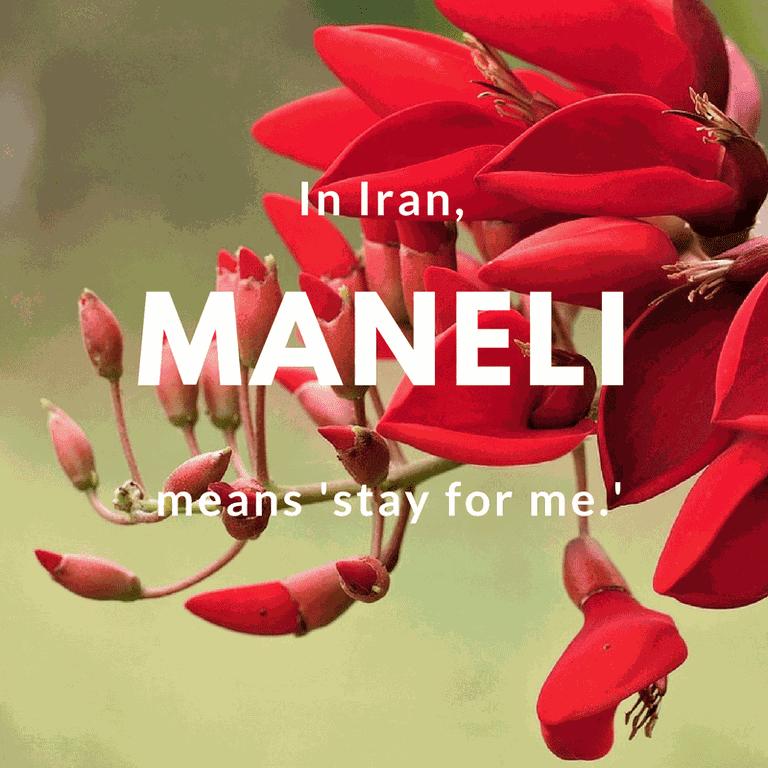 Maneli- stay for me | © vinsky2002 / Pixabay